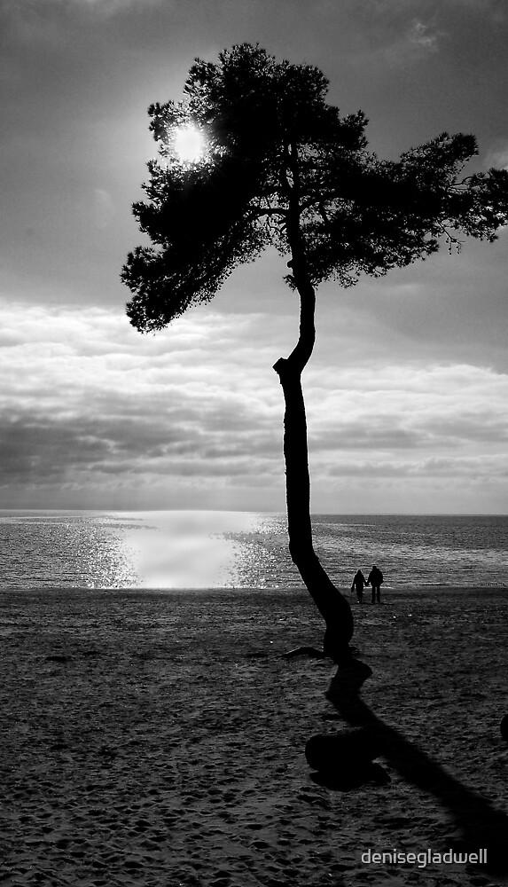 Walk on the beach by denisegladwell