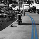 This way to the dry dock by denisegladwell