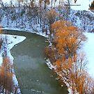 Humber River at first Light... by Larry Llewellyn