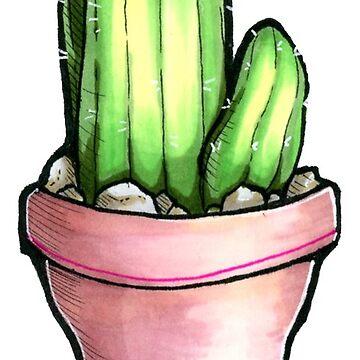 Einzelner Kaktus von Pompadorkery