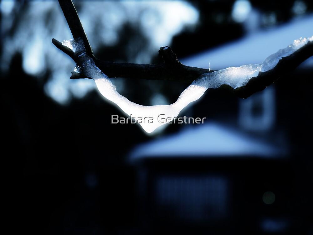 Suncatcher by Barbara Gerstner