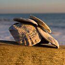 Hayling Island Shells by Daniel Knights