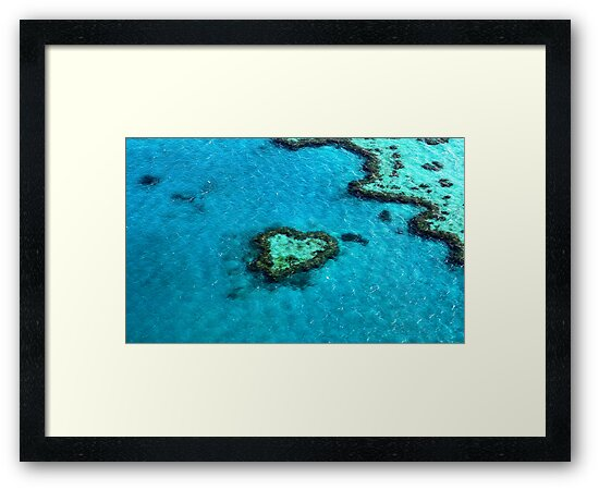 Heart Reef by Renee Hubbard Fine Art Photography