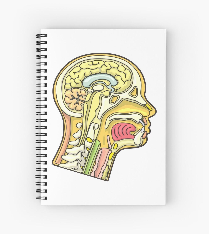 Cuadernos de espiral «Ilustración de la sección transversal de la ...