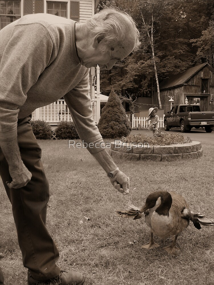 Bucky and His Pet Canadian Goose by Rebecca Bryson