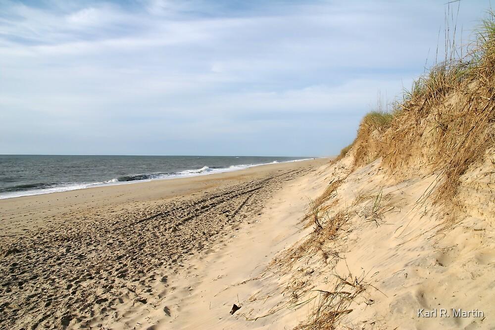 Ocean Beach by Karl R. Martin