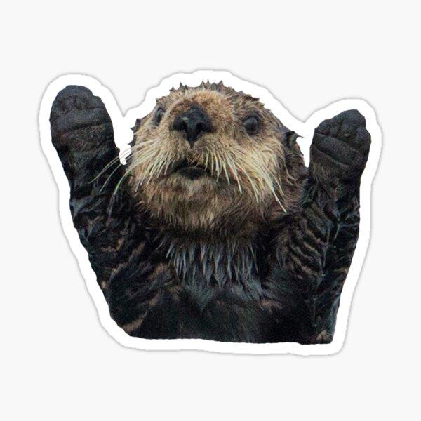 Otter Hugs Sticker