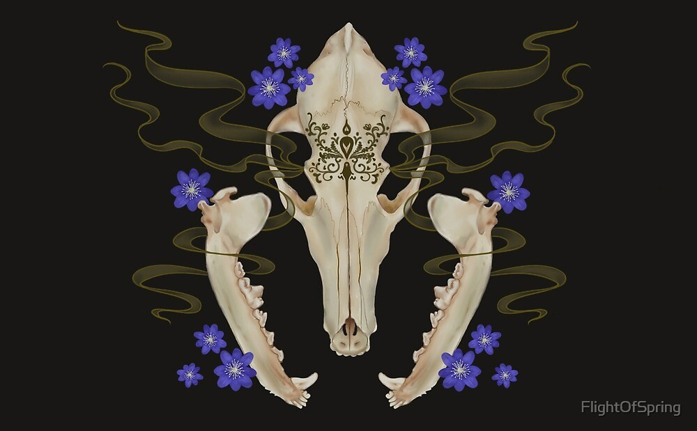 Coyote Skull with Forget-Me-Nots