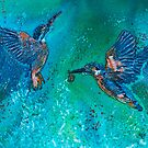 Kingfishers Making a Splash by Wendy Sinclair