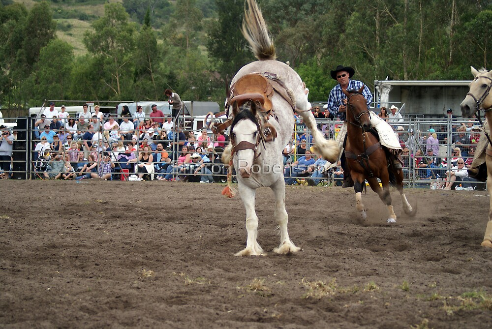 Picton Rodeo BRONC5 by Sharon Robertson