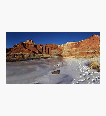 Frozen Desert Photographic Print