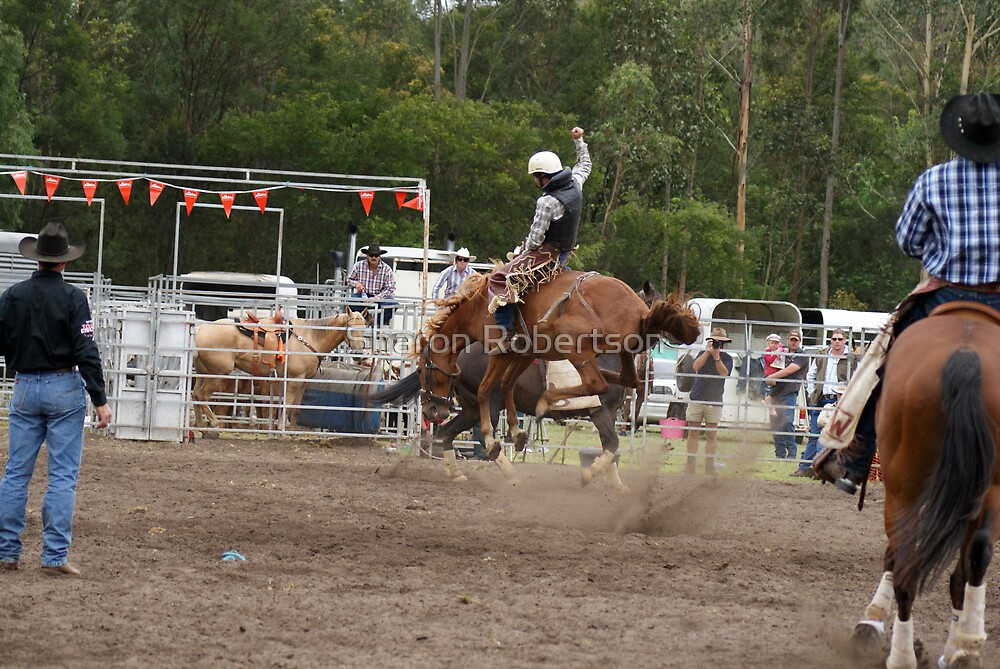 Picton Rodeo BRONC14 by Sharon Robertson