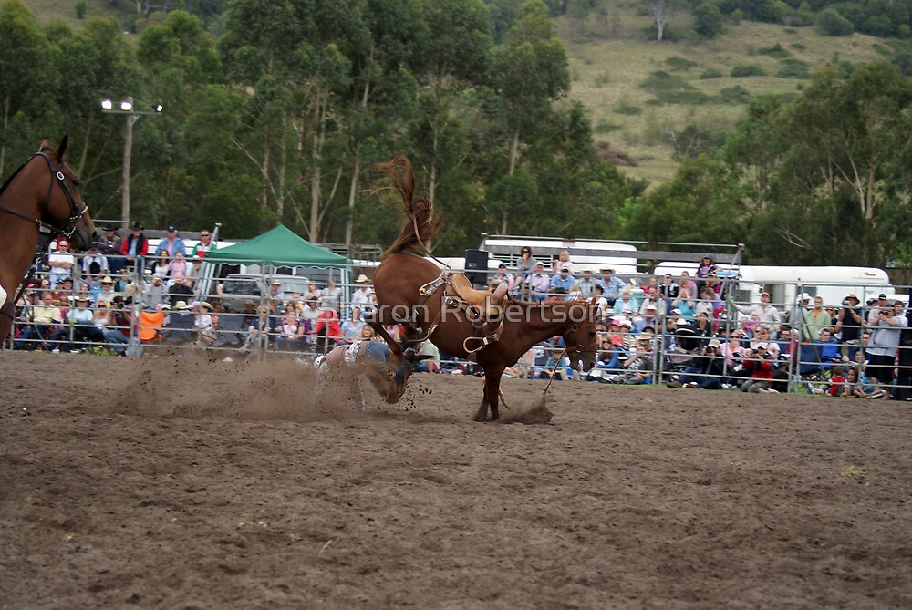 Picton Rodeo BRONC15 by Sharon Robertson