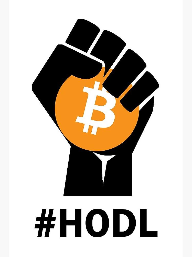 hodl bitcoin 0 08 btc į usd