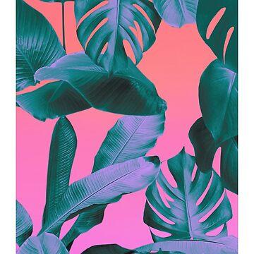Aesthetic Tropics by semdus