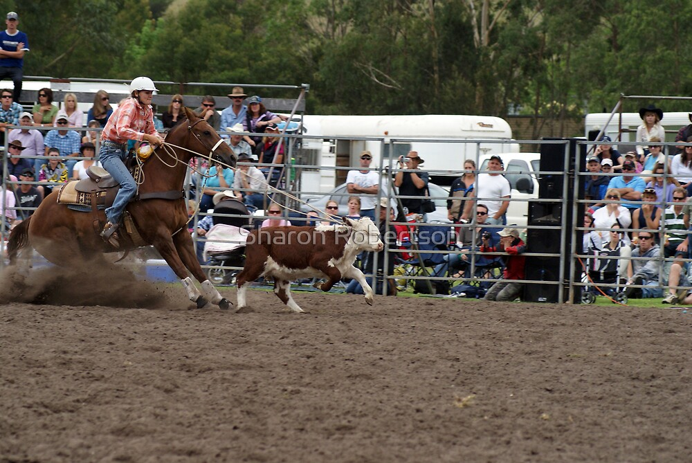 Picton Rodeo ROPE18 by Sharon Robertson