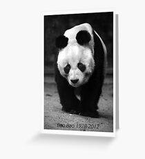 in memoriam panda Greeting Card