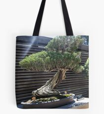 Zen Bonsai - Liz Leggett Photography Tote Bag