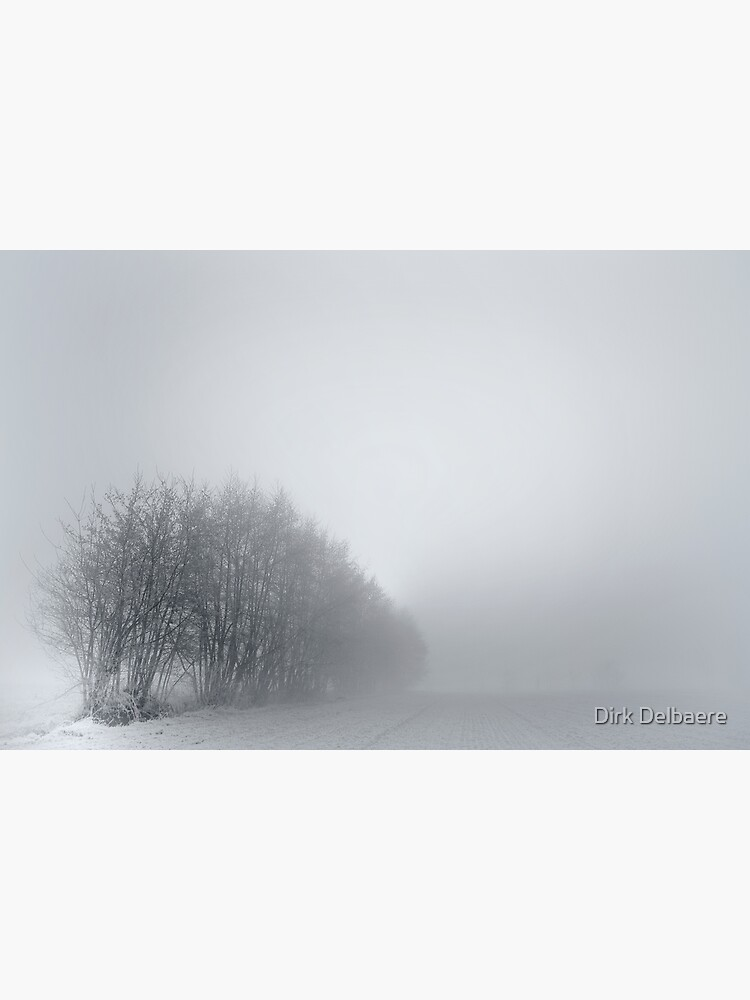 Trees; Mist by Delbaere