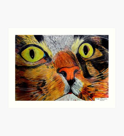 269 - MITCH - DAVE EDWARDS - COLOURED PENCILS & FINELINERS - 2009 Art Print