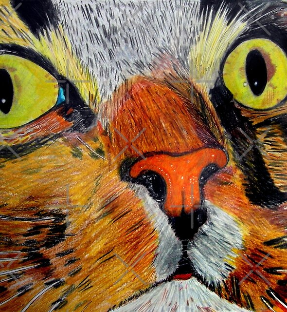 269 - MITCH - DAVE EDWARDS - COLOURED PENCILS & FINELINERS - 2009 by BLYTHART