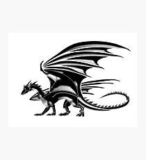 DRAGON, Flying Dragon, Black Photographic Print