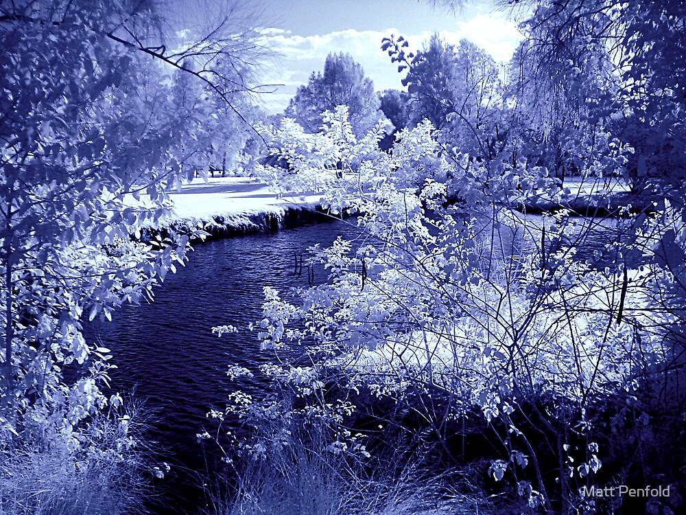 Blue pond by Matt Penfold