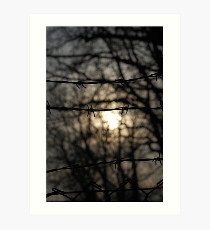 barbed wire sun Art Print
