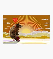 Big Bear with bicycle Photographic Print