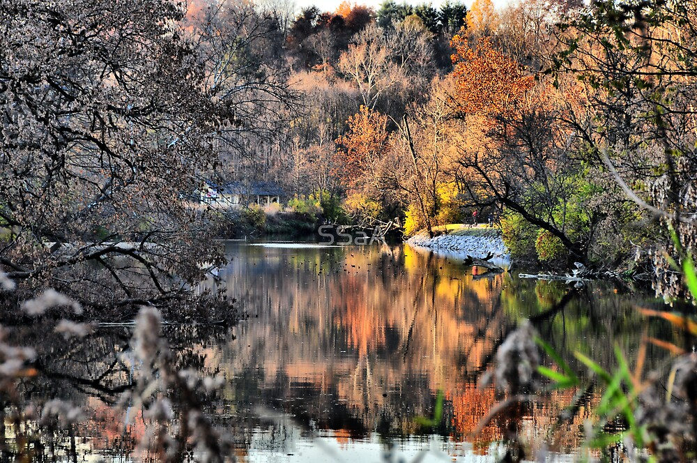 Autumn - Nature by SSaA
