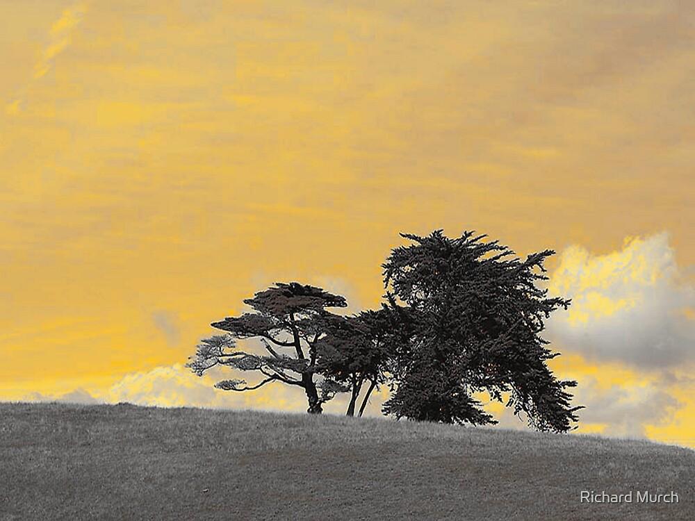 Two Worlds by Richard Murch