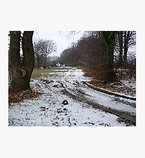 wintry scene Photographic Print