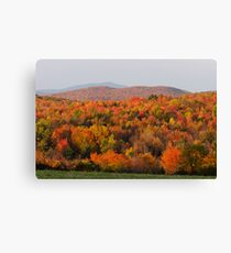 Peak Foliage - Vermont Canvas Print