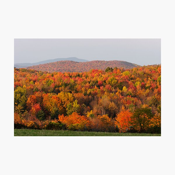 Peak Foliage - Vermont Photographic Print