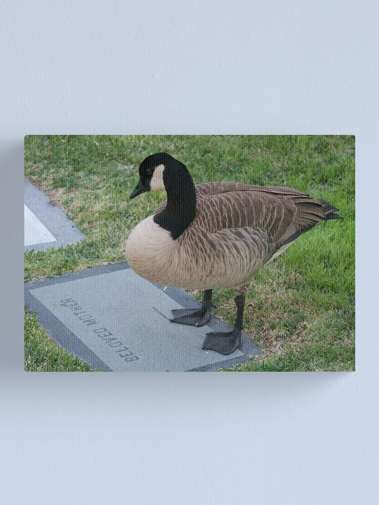 Alternate view of Mother Goose Canvas Print