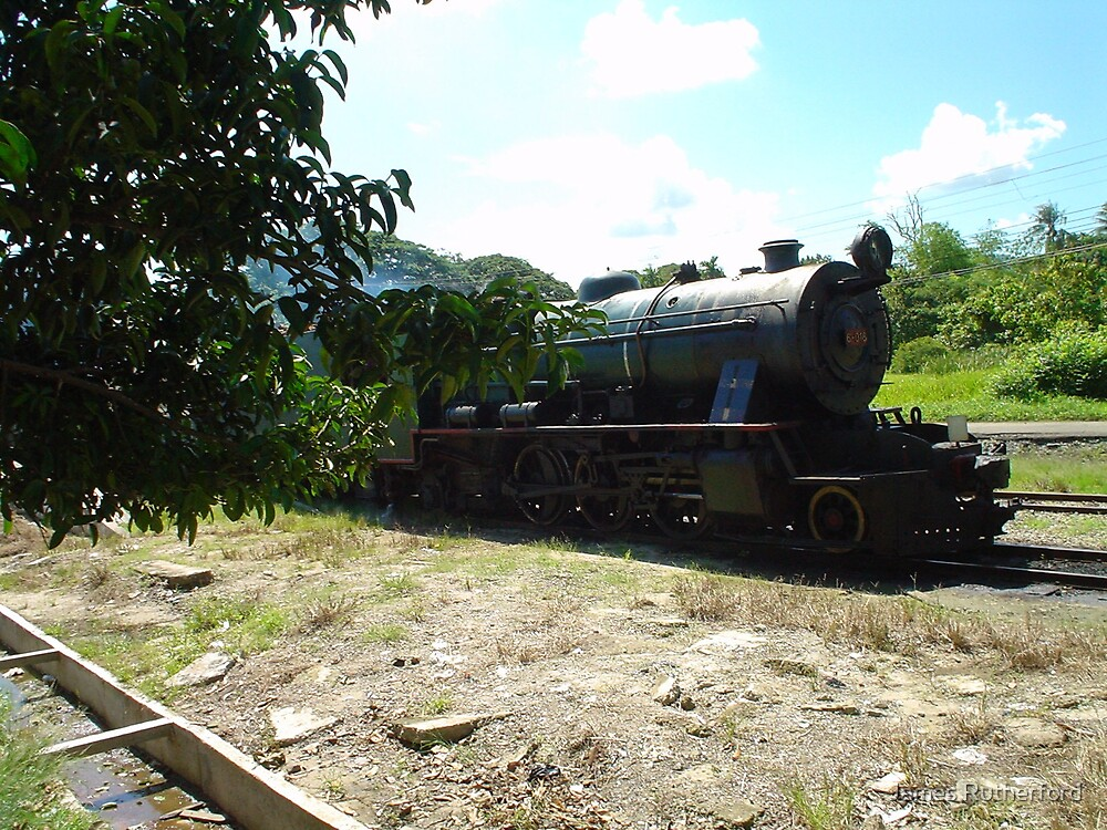 Borneo Rail by James Rutherford
