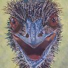 Old Man Emu by Wendy Sinclair