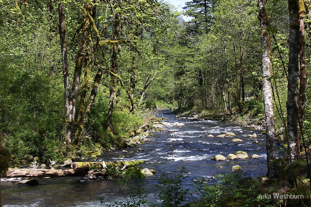Tanner Creek by Julia Washburn
