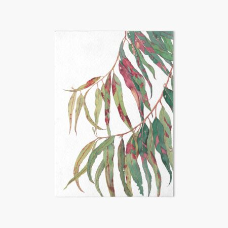 A touch of red - watercolour of eucalyptus branch Art Board Print
