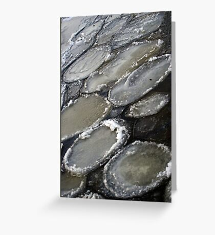 Ice plates Greeting Card