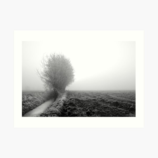 Misty ditch Art Print