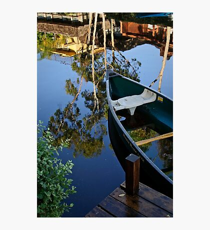 Floating on Eucalyptus Photographic Print