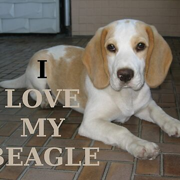 beagle tan and white love with picture by marasdaughter