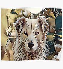 The Catahoula Leopard Dog  Poster