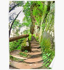 The Stairs At Rock House Hocking Hills Ohio Poster