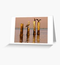Pelican and Cormorant on the old Ice House Piers 3 Greeting Card