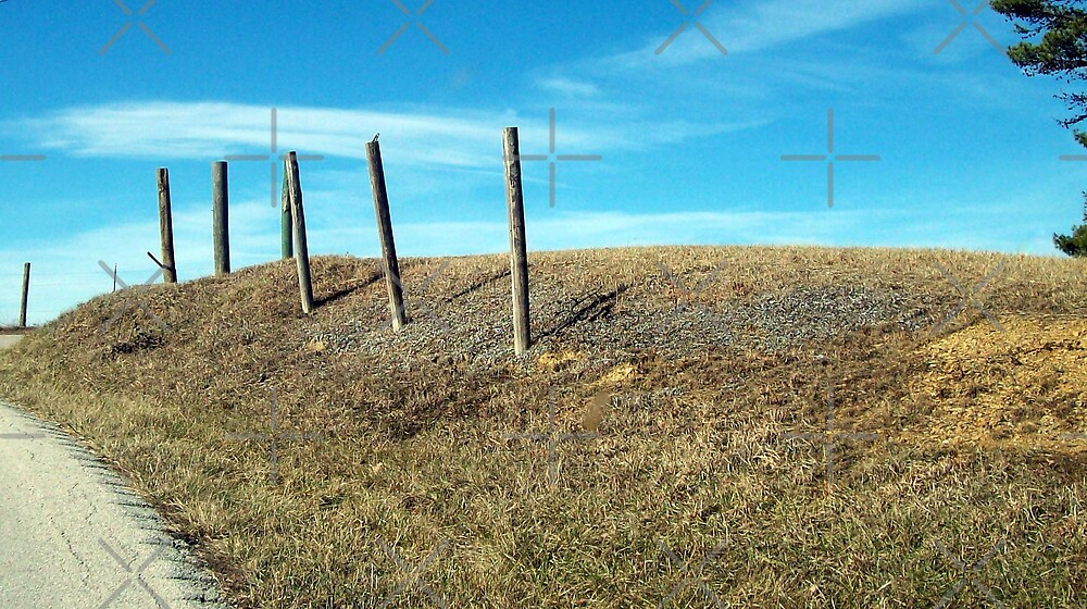 Fence post on ridge by Joshua Potter