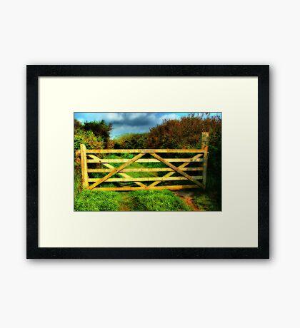 Gate Framed Print