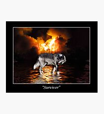 """Survivor"" Grey Wolf & Burning Forest Fire Photographic Print"