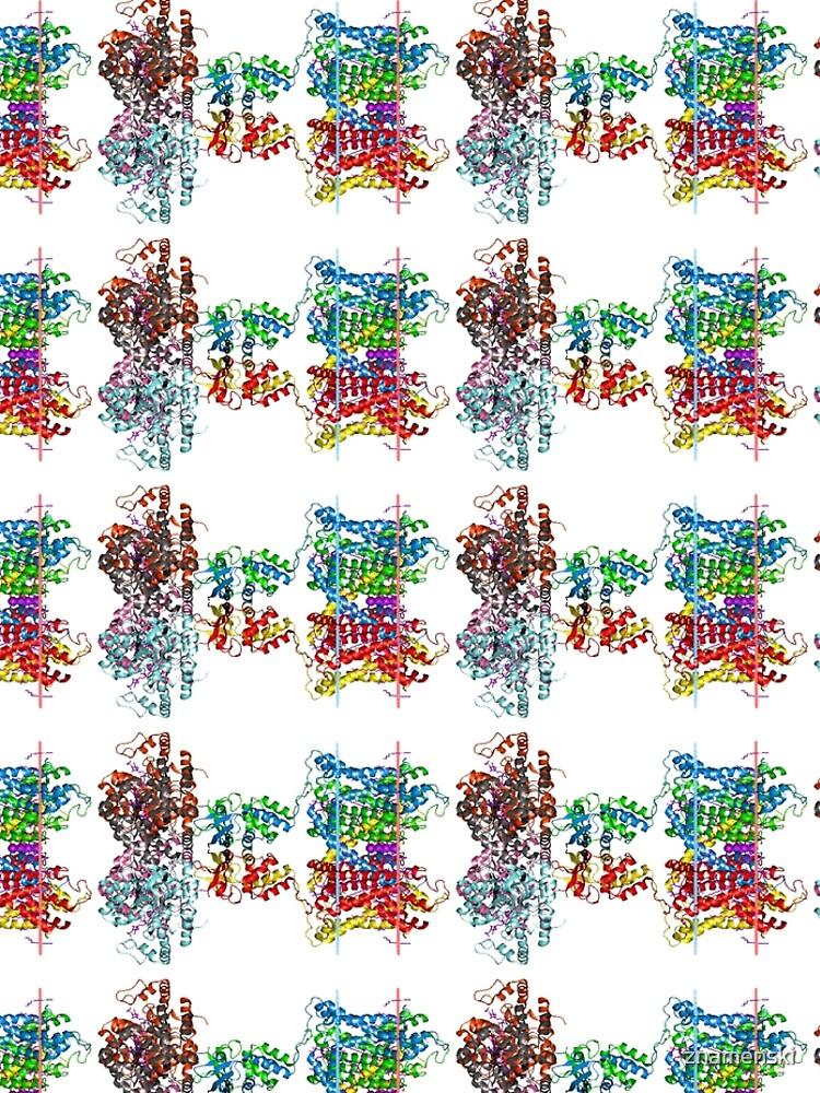 Molecular Structure of Ion Channels, #Molecular, #Structure, #Ion, #Channels, #MolecularStructure, #IonChannels, #IonChannelMolecularStructure, #IonChannel by znamenski